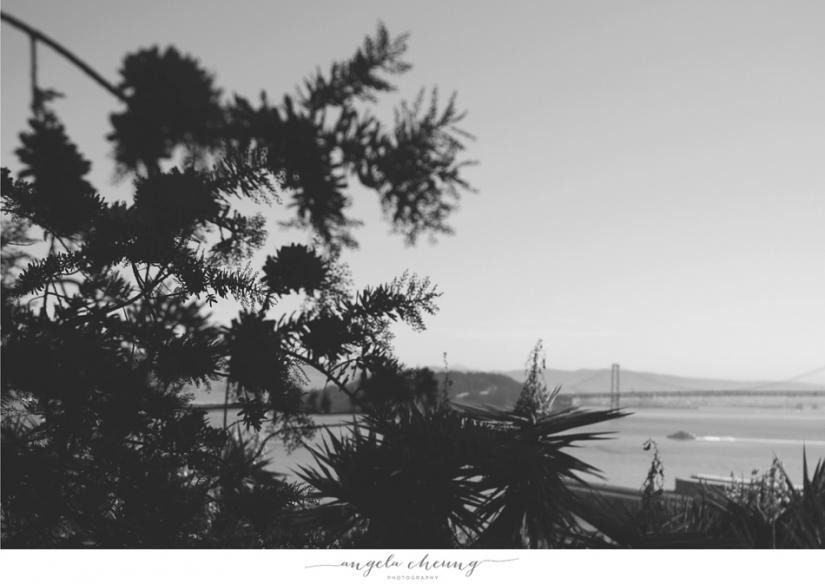 Angela Cheung Photography_0301